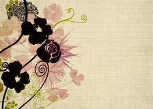 Floral background. Illustration of flowers on vintage paper Royalty Free Stock Photos