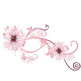 Floral background. Illustration of a floral background Royalty Free Stock Photos