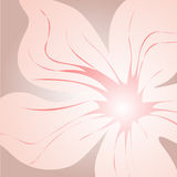 Floral background. In pink and purple (vector vector illustration