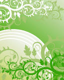 Floral background. (abstract vector ornament Stock Photos