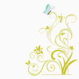 Floral background. Floral swirl background with butterflies Stock Images