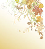 Floral background. Royalty Free Stock Photography