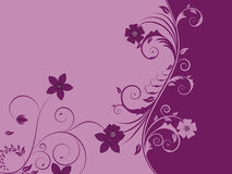 Floral background. For design use. Vector illustration Royalty Free Stock Image