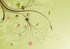 Floral background. With bud, element for design,  illustration Stock Photography
