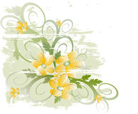 Floral background. (abstract vector ornament Stock Image