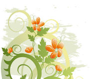 Floral background. Grunge floral background (abstract vector ornament Royalty Free Stock Image