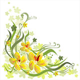 Floral background. Vector floral background and ornament Royalty Free Stock Photos