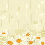 Floral background. Illustration of a hand drawn floral background Stock Photo