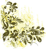 Floral background. Illustration can be used for different purposes Royalty Free Stock Image