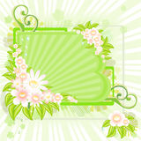 Floral background. With copy space for text Stock Image