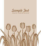Floral background. Vector illustration depicting the background with tulips Stock Images