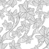 Floral background. Floral  background with bluedrawing poppy flowers Stock Image