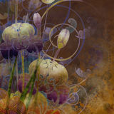 Floral background Royalty Free Stock Image