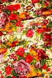 Cotton floral background Stock Images