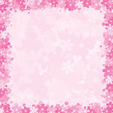 Floral Background. Soft Pink Floral Background, Template for your Text or Design Royalty Free Stock Photo