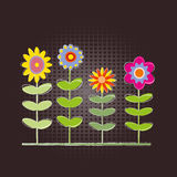 Floral background. Handdrawn colorful flower on dark background Royalty Free Stock Image