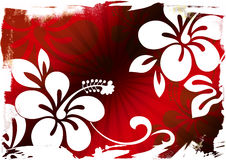 FLORAL BACKGROUND. Illustration drawing of floral background Stock Photography
