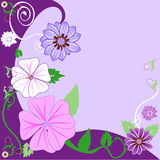 Floral Background 3 Royalty Free Stock Images