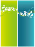 Floral background. Vector floral background with tape Stock Photo