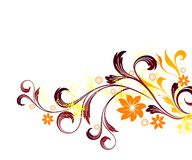 Floral background. With illustration drawing Royalty Free Illustration
