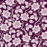 Floral background. Stock Photo