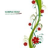 Floral background. Illustration, green vector floral frame Stock Images