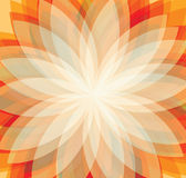 Floral background. Vector background In flower style Stock Image