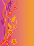 Floral background. Vector illustration of a colorful floral background Stock Photography