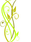 Floral background. Vector illustration of a green floral background Royalty Free Stock Image