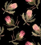Seamless pattern with protea flower. stock illustration