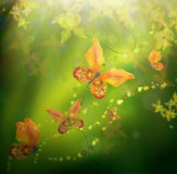 Floral background. Amazing butterflies from the petals of orchids, floral background. Flowers and insects Stock Photos