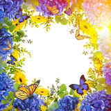 Floral background. Amazing background with hydrangeas and daisies. Yellow and blue flowers on a white blank. Floral card nature. bokeh butterflies Stock Image