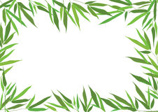 Floral background with bamboo leaves and copy space Stock Image