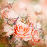 Floral background. Beautiful roses and butterfly, flower, floral background Stock Images