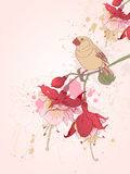 Floral background with bird Stock Photography