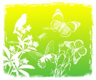 Floral background with bird and butterflies Royalty Free Stock Photo