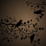 Floral Background, birds Stock Image