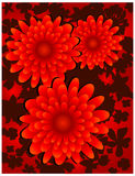 Floral background on black. Floral background, red flowers on black, element for design, vector illustration Stock Images