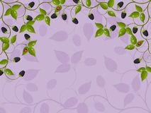 Floral background with blackberry Stock Photo
