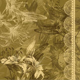 Floral background with blooming lilies and lace. H Stock Image
