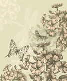 Floral background with blooming phlox and flying b. Utterflies, hand-drawing Royalty Free Stock Images