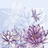 Floral background with blooming water lilies and d. Ragonflies flying, hand-drawing Royalty Free Stock Photography