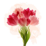 Floral background with bouquet of tulips Stock Photos
