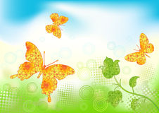 Floral background with butterfly. Royalty Free Stock Photos