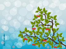 Floral background with a cherry Royalty Free Stock Photo