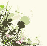 Floral background with clover Stock Images