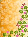 Floral background with a clover Royalty Free Stock Image