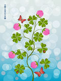 Floral background with a clover Royalty Free Stock Photography
