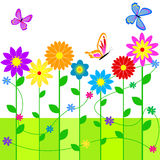 Floral background. Colorful floral background with butterflies Stock Images
