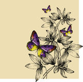 Floral background with colorful butterflies and snowdrops, hand-. Drawing. Vector royalty free illustration